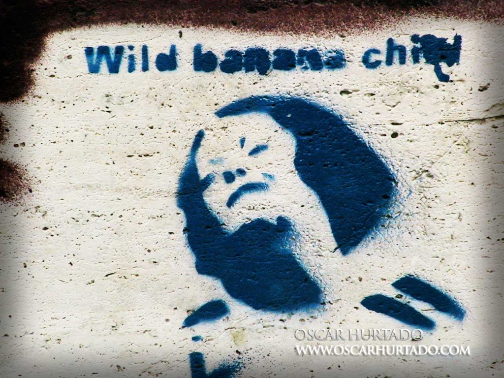 Blue graffiti of a woman under the Wild Banana Child brand