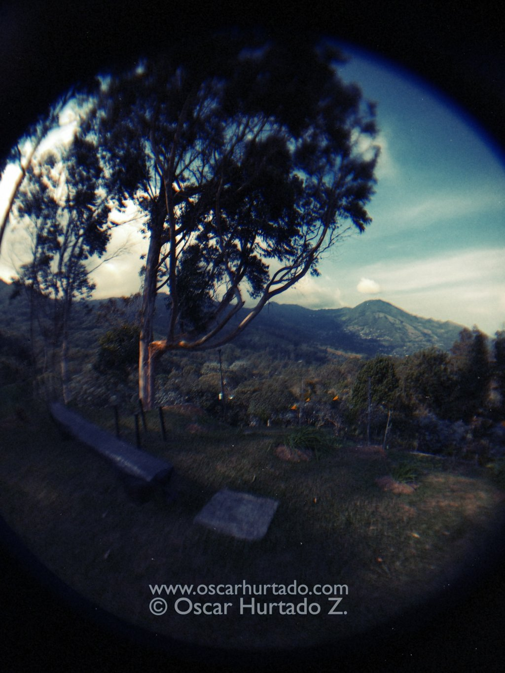 Distorted Nature - Fish-eye color photograph (2014)