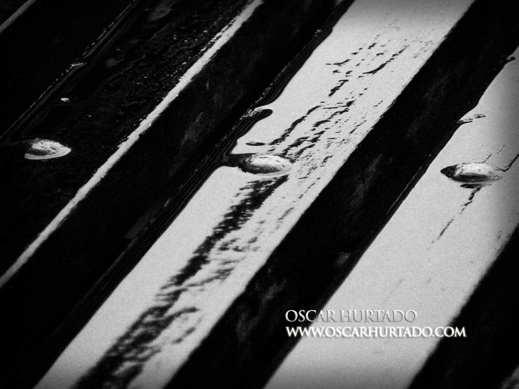 Wet Accents - Black and White photograph (2008)