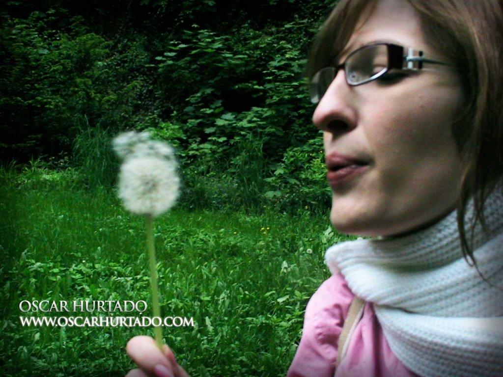 Blowing Dandelions - Color photograph (2008)