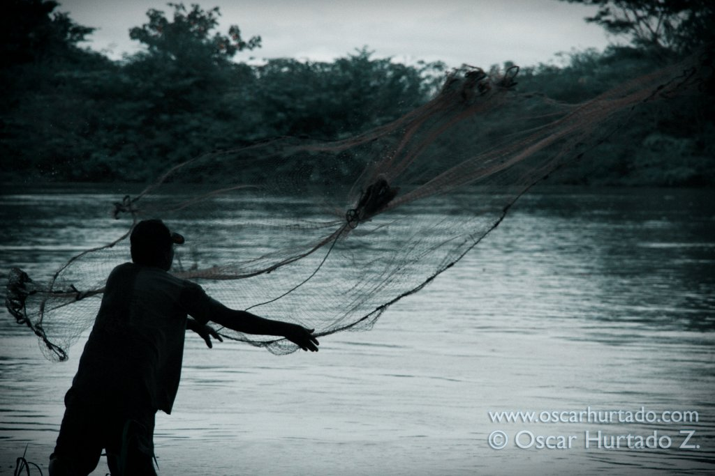 A local fisherman sets his net in hopes to catch that big fish hiding and lurking in the deep mysterious waters of the Magdalena river