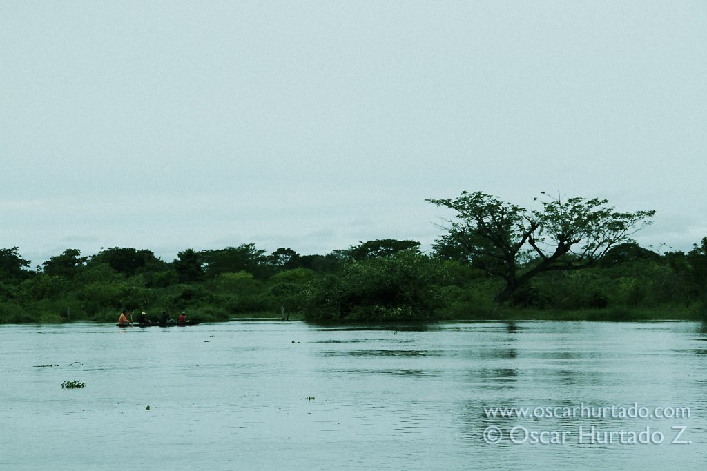 A small group of people crosses the flooded landscape of the Magdalena river on canoe