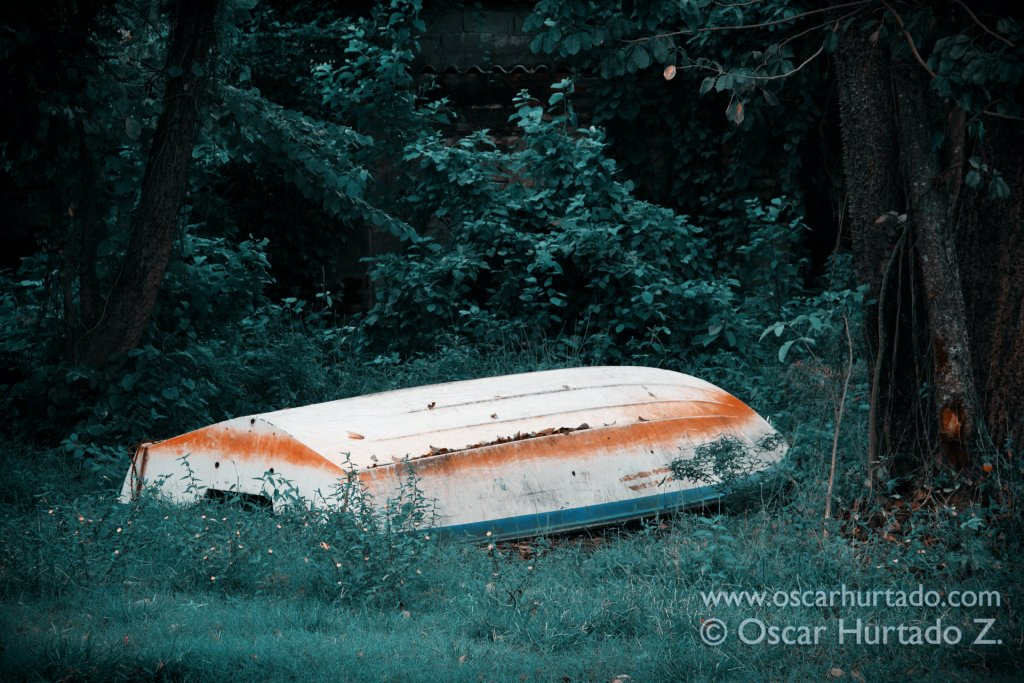 Picturesque abandoned boat found contrasting with the vegetation surrounding the town of Mompox, Colombia