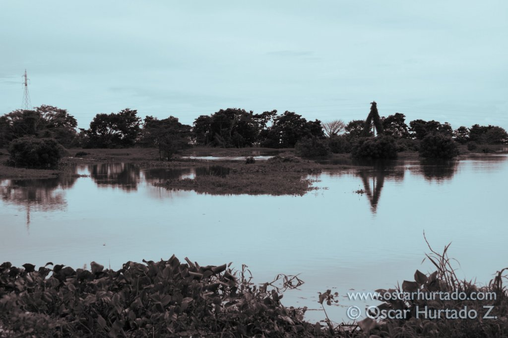 The flooded landscape seen across the flooded shores of the Magdalena river during the rainy season